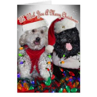 Cartes Cockapoo nous vous souhaitons le Joyeux Noël