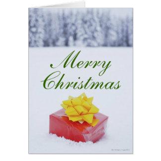 Cartes Colis de Noël dans le paysage neigeux