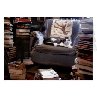 Cartes Collection de livres de Mlle Kitty
