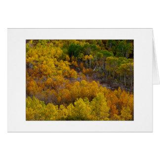 "Cartes ""Colline d'arbre d'Aspen """