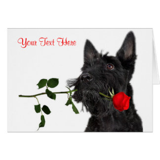 Cartes Conception de Valentine de rose rouge de chiot de