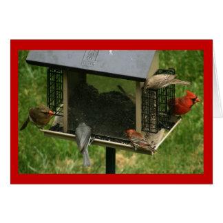 Cartes Conducteur occupé d'oiseau