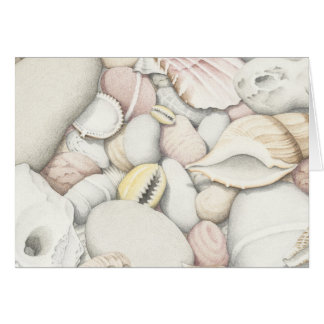 Cartes Coquilles et cailloux de mer dans le crayon coloré