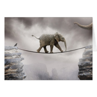 Cartes Corde raide de promenades d'éléphant de bébé à