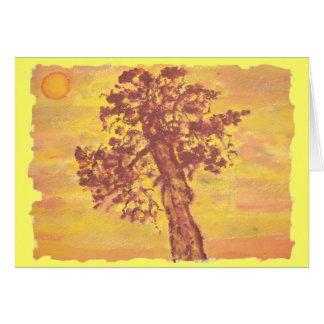 Cartes coucher du soleil d'arbre de genévrier