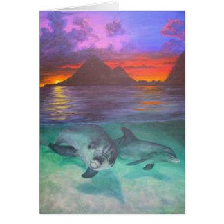 Cartes coucher du soleil de dauphin