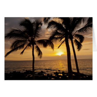 Cartes Coucher du soleil de palmier