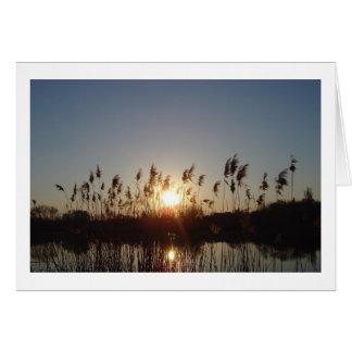 Cartes coucher du soleil sur le lac
