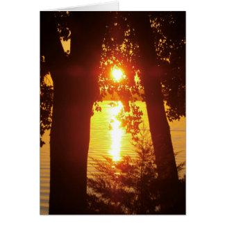 Cartes Coucher du soleil sur le lac avec des arbres