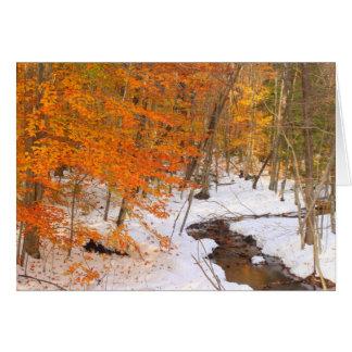 Cartes Courant de forêt de Monadnock de bâti et feuillage