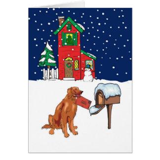 Cartes Courrier de Noël de poseur irlandais