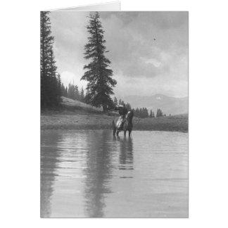 Cartes Cowboy sur un cheval se tenant dans un étang