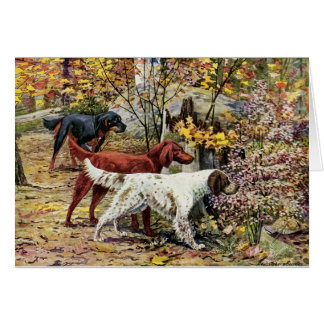 Cartes Cru - trois chiens de poseur dans les bois,