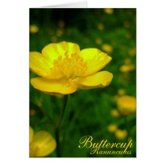 Cartes customisées de fleurs sauvages de carte de