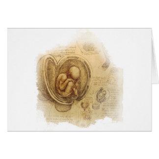 Cartes da Vinci - croquis d'embryon