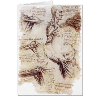 Cartes da Vinci -- Croquis d'épaule