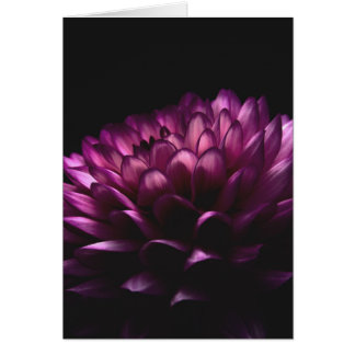 Cartes Dahlia de fleur