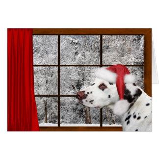 Cartes Dalmate de Noël