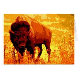 Cartes de bison/de Buffalo