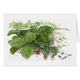 Cartes de fraises