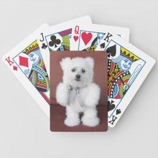 Cartes de jeu - cailloux jeu de cartes