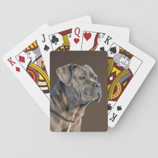Cartes de jeu de Corso de canne Jeux De Cartes Poker