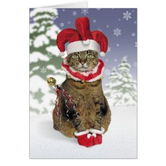 Cartes de Noël de chat de farceur de Père Noël
