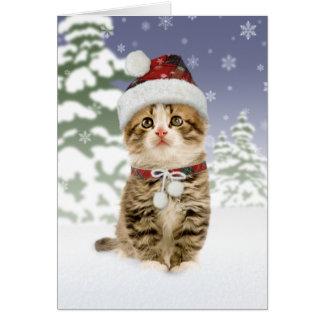 Cartes de Noël de chaton de Milou