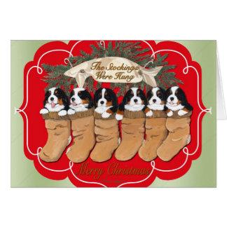 Cartes de Noël de chien de montagne de Bernese