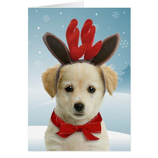 Cartes de Noël de chiot de renne