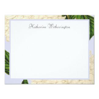 Cartes de note personnalisées par hortensia blanc