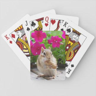 Cartes de tamia cartes à jouer