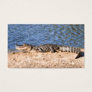 Cartes De Visite Alligator exposant au soleil au lac