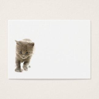 Cartes De Visite chaton mignon