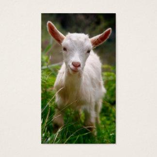 Cartes De Visite Chèvre d'enfant