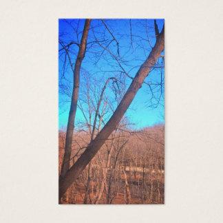 Cartes de visite d'arbres en bois du Wisconsin