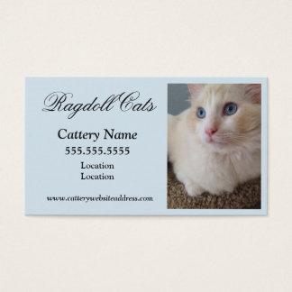 Cartes de visite de chat