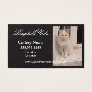 Cartes de visite de pension pour chats de Ragdoll