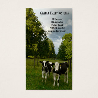 Cartes De Visite Ferme de veau de veau du Holstein