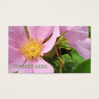 Cartes De Visite Fleurs florales roses de fleur d'usine de pivoines