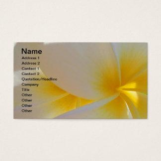 Cartes De Visite Frangipani hawaïen
