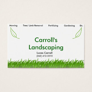 Cartes De Visite L'aménagement de Carroll
