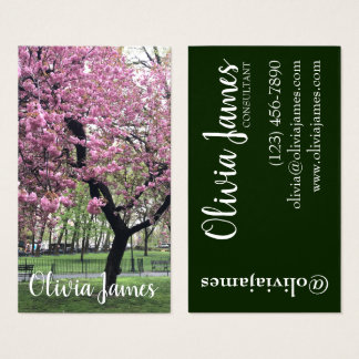Cartes De Visite Le cerisier rose fleurit photographie florale de