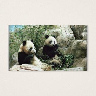 Cartes De Visite Ours panda mangeant et jouant