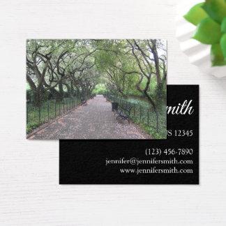 Cartes De Visite Photographie conservatrice du Central Park NYC de