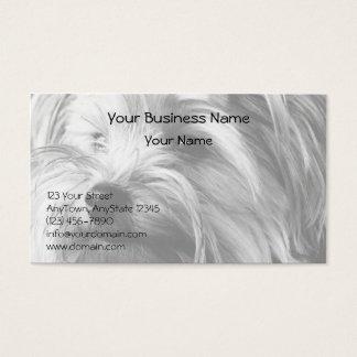 Cartes De Visite Portrait noir et blanc de Yorkshire Terrier Yorkie