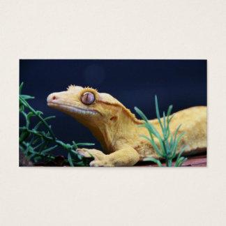 Cartes De Visite Repos crêté jaune de Gecko
