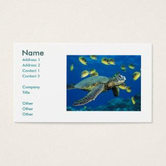 Cartes De Visite Tortue de mer verte, nom, adresse 1, adresse 2, C…