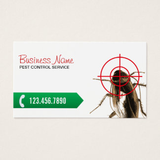 Cartes De Visite Tueur professionnel d'insecte de lutte contre les