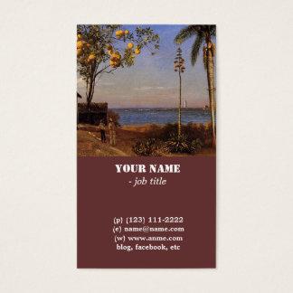 Cartes De Visite Une vue en Bahamas par Bierstadt Albert